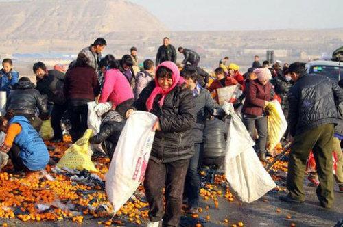 中国でみかんトラックが横転した結果05