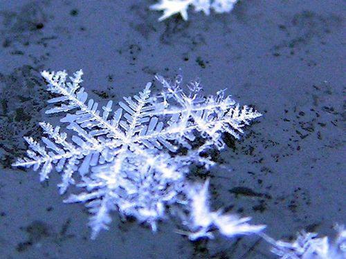 00雪や氷や氷点下の冬の写真画像