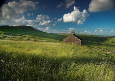 02-イギリスの草原