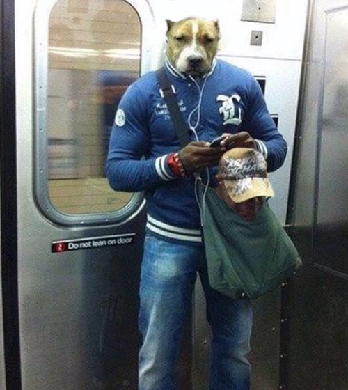 ニューヨークの地下鉄と犬02