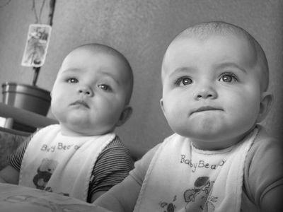 双子の姉妹が同日出産00
