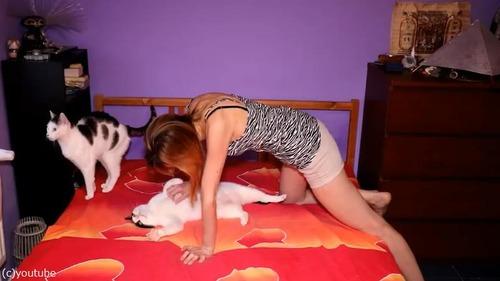 猫が2匹いるとこんなにベッドメイキングが大変03