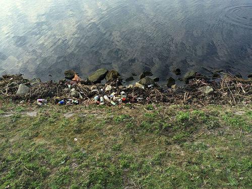 オランダの川辺をゴミ掃除11