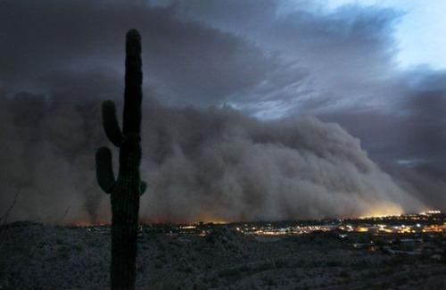 アリゾナ砂嵐09