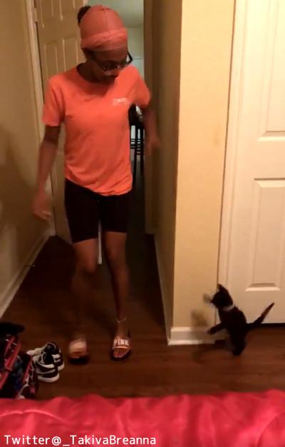 猫「わっ!」 飼い主さんへの可愛すぎるイタズラ04
