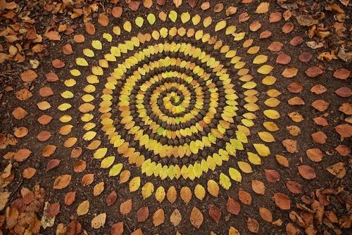 葉っぱや石を並べたアート03