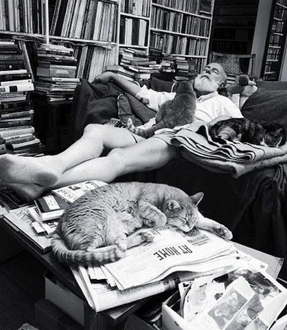 芸術家と猫 gorey