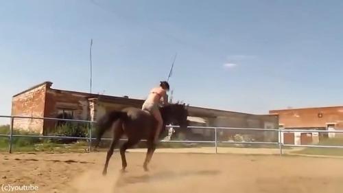 紳士な馬05