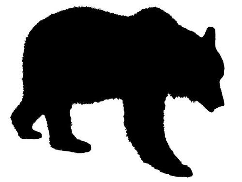 クマの保護施設でボランティア