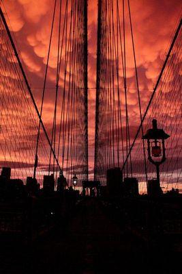 ニューヨークの空を埋め尽くした乳房雲12