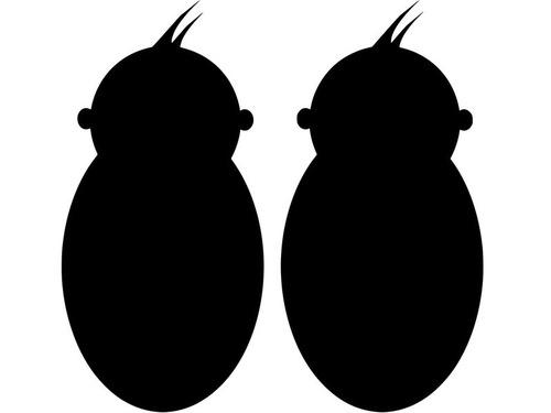 双子のナースが双子の赤ちゃんを取り上げる