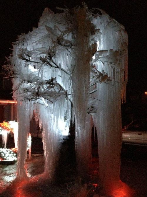 寒冷地仕様のクリスマスツリー08
