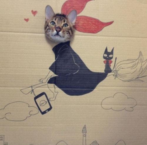 ダンボール猫アート09