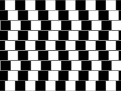 目の錯覚画像に話題沸騰00