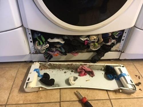 靴下が片方だけ無くなるのはなぜなのか01
