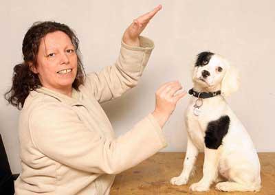 犬と手話01