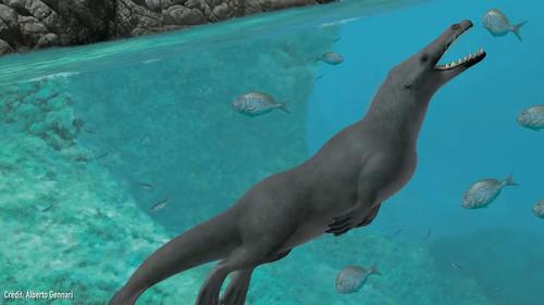 クジラの祖先が4本足だった証拠の化石01