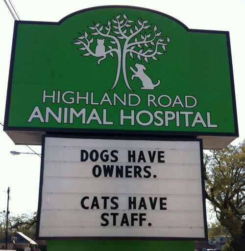 獣医が挙げたおもしろサイン02