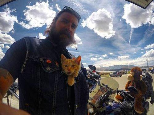 バイク乗りと子猫00