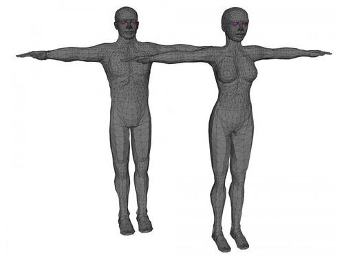 人体のトリビア