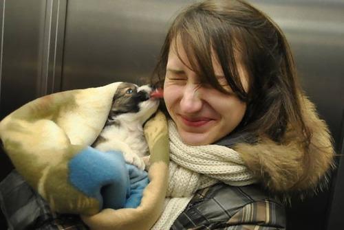 愛犬と初めて出会った日21