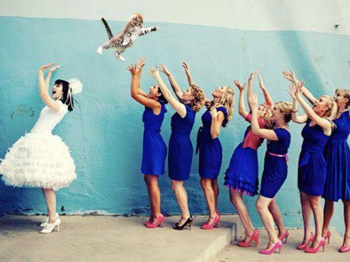 結婚式のブーケを猫に01