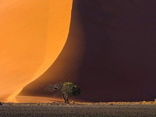 ナミブ砂漠のDune4500