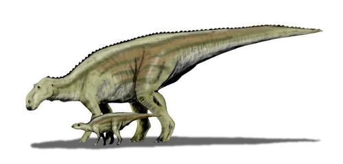 恐竜の体温は温かかった01
