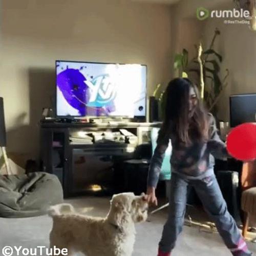 バルーン遊びを楽しむ子ども&ワンちゃん04