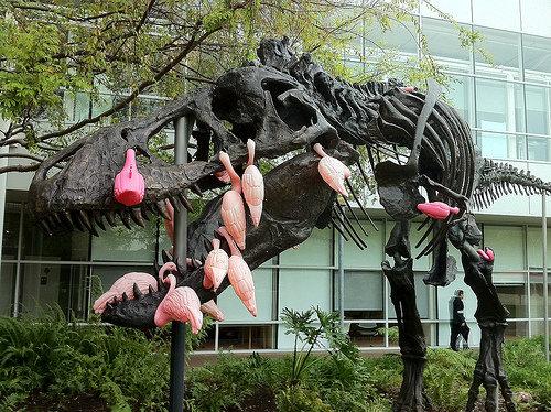 フラミンゴの群れはティラノサウルスを90秒で倒せる06