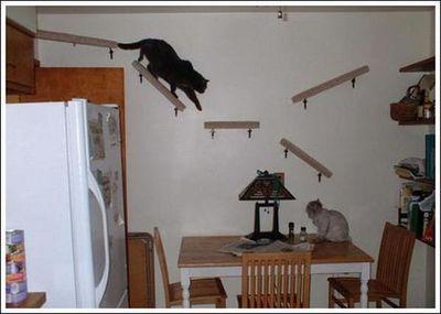 猫用の足場05