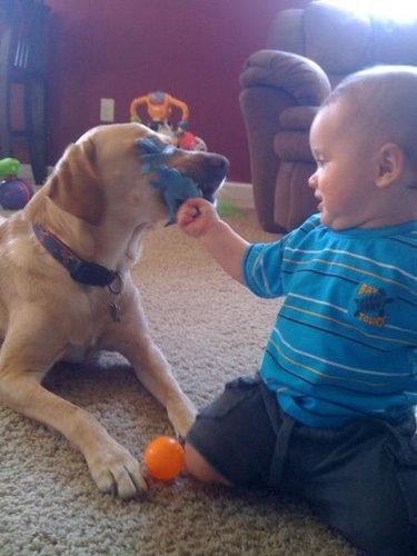 息子と愛犬の友情10