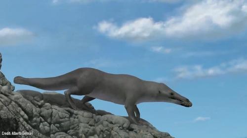 クジラの祖先が4本足だった証拠の化石00