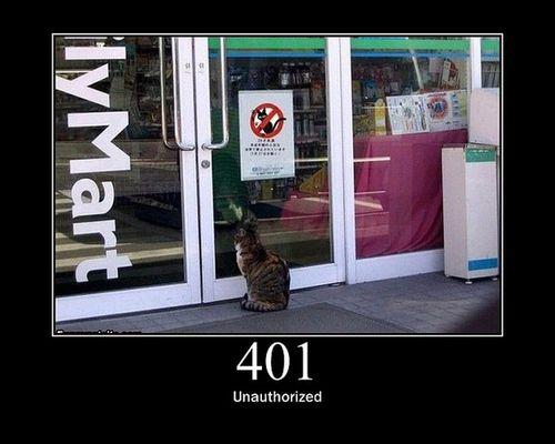 猫でHTTPステータスコード06