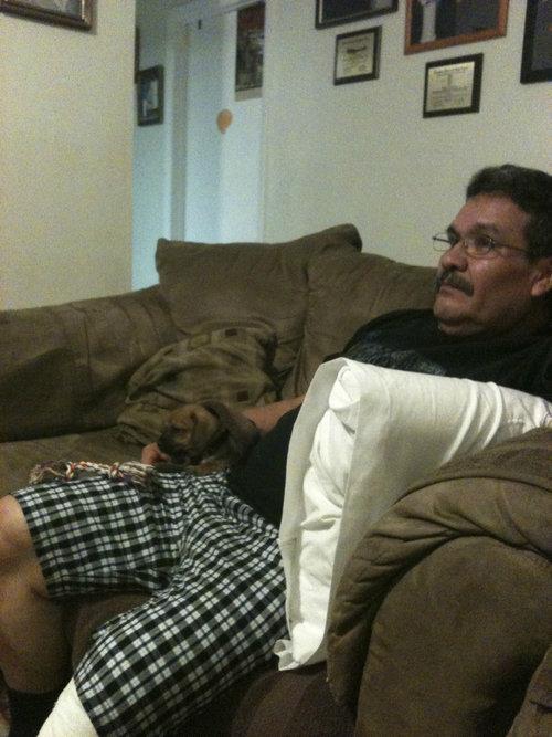 「父さんの反対を押し切って犬を飼うことにした」03