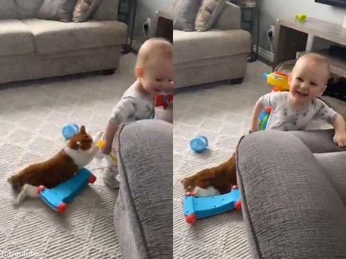 猫をお尻にぶら下げる赤ちゃん02