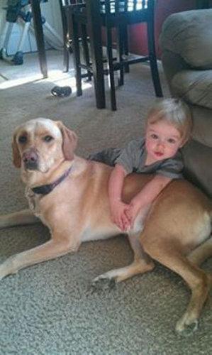 息子と愛犬の友情17
