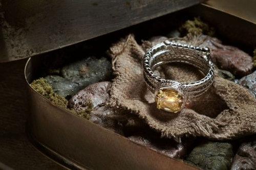 マニアとオタクの結婚指輪15