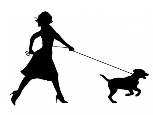 1日1回犬の散歩をしないと罰金刑00