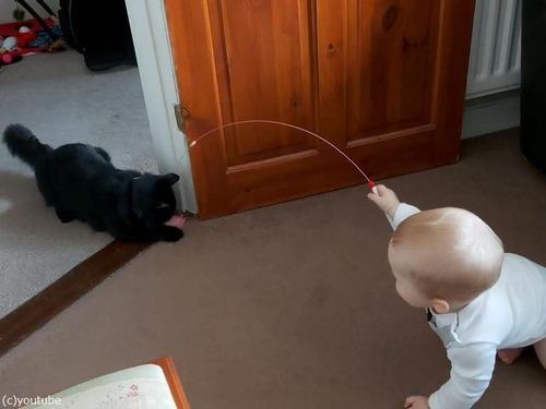 猫を操る赤ちゃん00