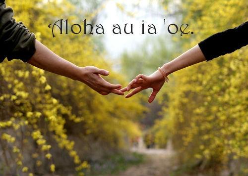 世界の「I love you」16