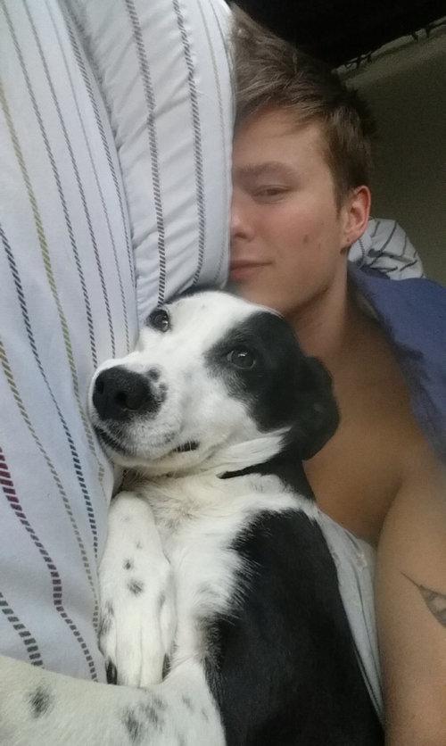 ルームメートと犬01