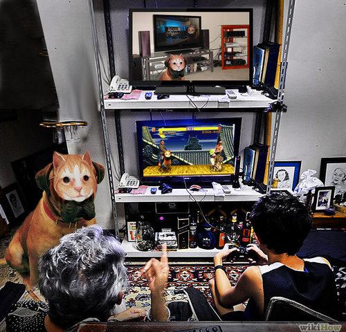 犬に猫マスク17