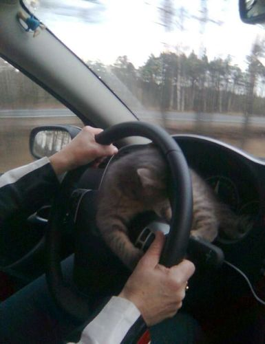 ロシアの危険な運転02