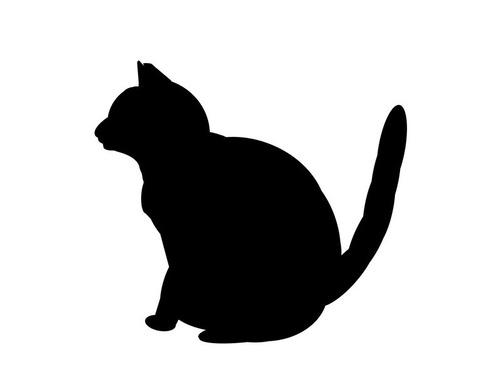 今朝のうちの猫(美顔横顔)00