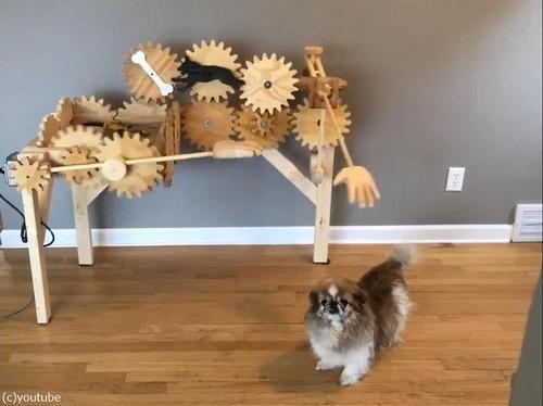 犬を自動でナデナデするマシーン05