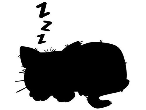 猫と一緒に寝る