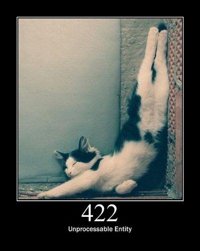 猫でHTTPステータスコード17