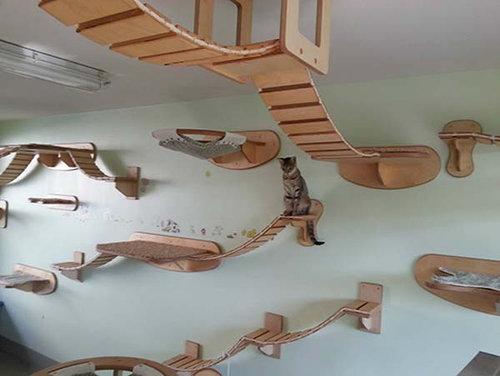 猫用のつり橋04