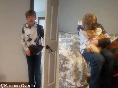 少年と迷子猫の感動の再会00